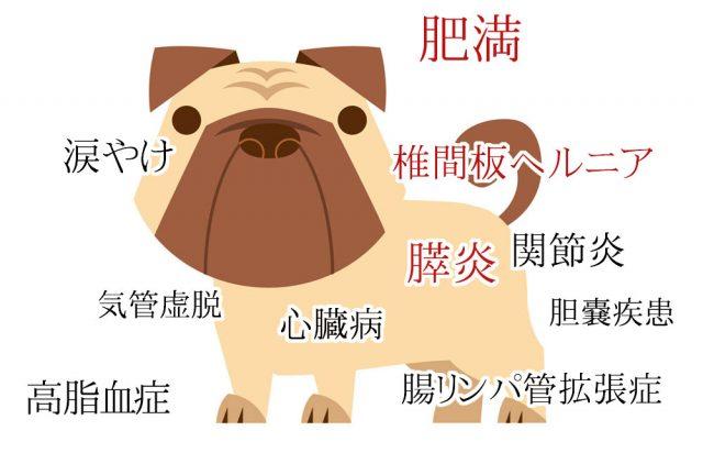 低脂肪ドッグフードが向いている犬
