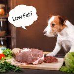 低脂肪ドッグフード